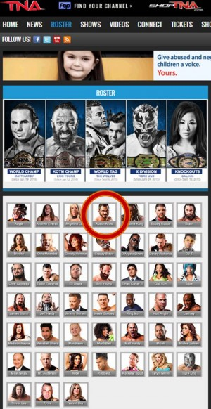 TNA roster January 29 2016