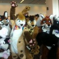 furries1