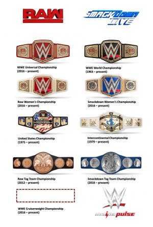 wwe-championship-belts-on-raw-and-smackdown-live-2016-september-12-2016