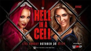 hell-in-a-cell-2016-banner