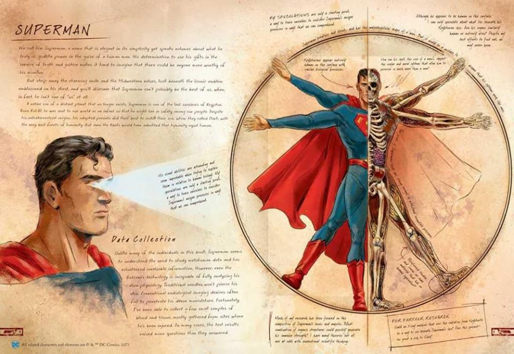 DC Comics Universe & Anatomy Of A Metahuman Spoilers: How Does ...
